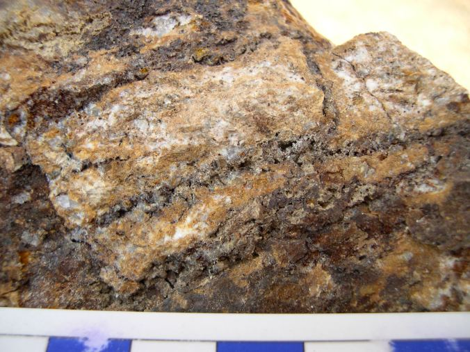 porphyry-with-strong-qtz-and-oxsulfide-stckwk