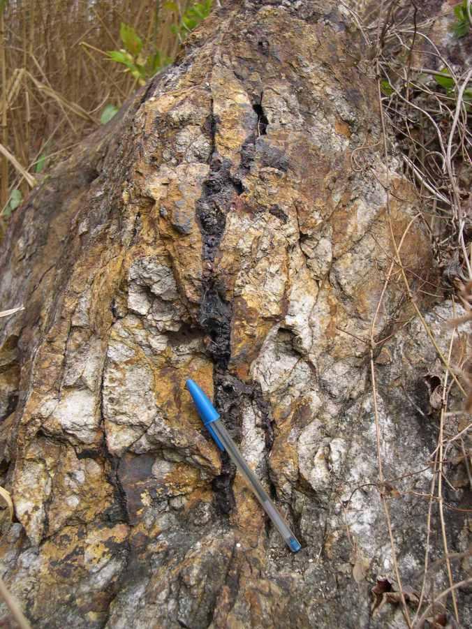 Oxidized sulfide veinlet, La Javia SE, 2m from sample 18595
